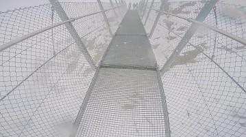 walkbridge 1